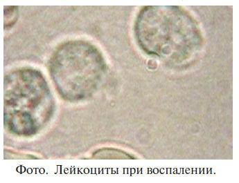 Код здоровья от Шишовой8