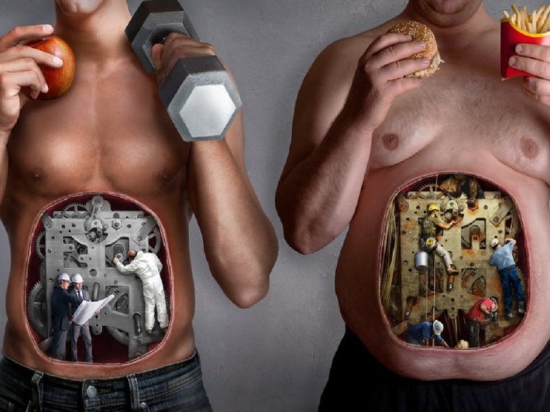 Метаболизм одинаков у мужчин и женщин